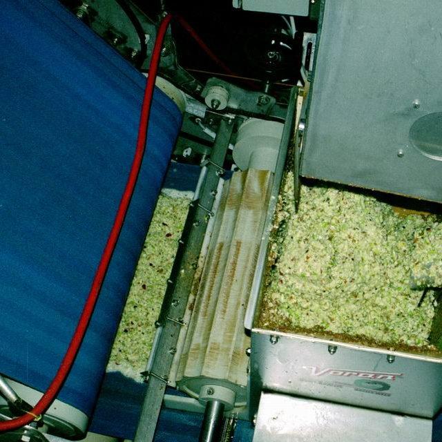 Aus der Mühle gelangt die Maische direkt in die Presse.