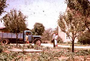 1927 wurden auf dem heutigen Betriebsstandort erstmals Früchte gekeltert
