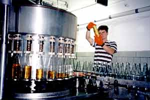 1996 gründete Werner Sell mit seinem Sohn Torsten Sell das Unternehmen in seiner heute bestandhaften Form; die Süßmost- und Weinkelterei Sell GmbH